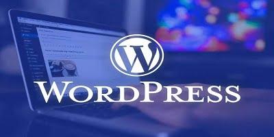 wordpress her kelimenin bas harfi buyuk yaziyor