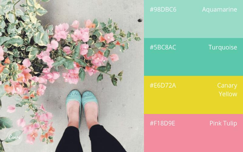 birbiriyle uyumlu renkler Kopya