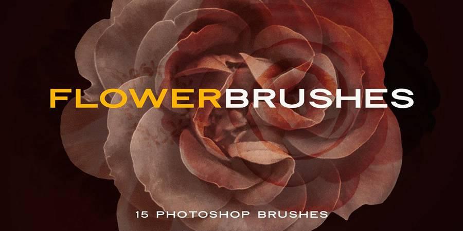 elegant flower brush set photoshop